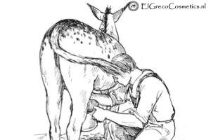 De Top 10 voordelen van havermout scrub ezelinnenmelk zeep